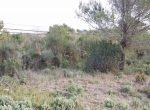 12564 — Участок с видами под застройку в Бегур | 11021-1-150x110-jpg