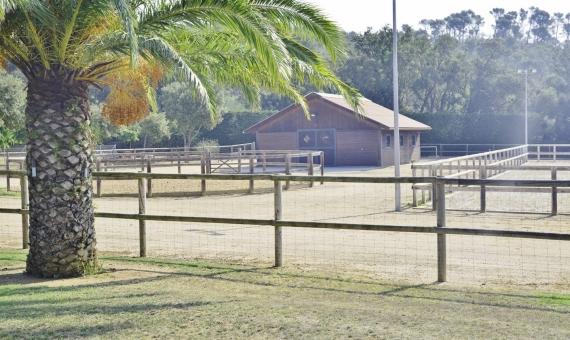 Эксклюзивное поместье с конюшнями | 11775-7-570x340-jpg