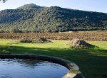 12329 — Поместья и замки  — Коста Брава | 6322-8-150x110-jpg