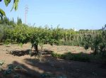 11198 — Продажа поместья с землей 1,5 Га в пригороде Барселоны | 9047-16-150x110-jpg