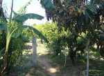 11198 — Продажа поместья с землей 1,5 Га в пригороде Барселоны | 9047-7-150x110-jpg
