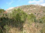 12134 — Уникальный по своей площади участок с видом на море в престижной урбанизации Рат Пенат | 9866-8-150x110-jpg