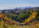 12771 — Новые квартиры в Алея под Барселоной на Коста Маресме | 0-20170126-211625-png-150x110-png