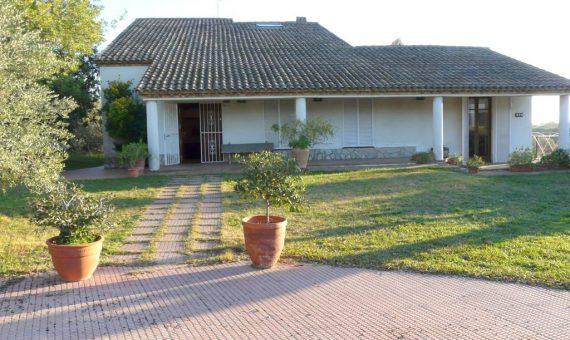 Дом с виноградниками и участком 16.000 м2 | p1220457-fileminimizer-570x340-jpg